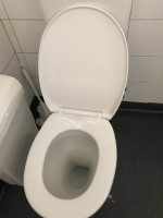 Blocked Drains and Sewer Repair Services at Niddrie Melbourne VIC By P.A.D Plumbing & Maintenance Pty Ltd via i4Tradies