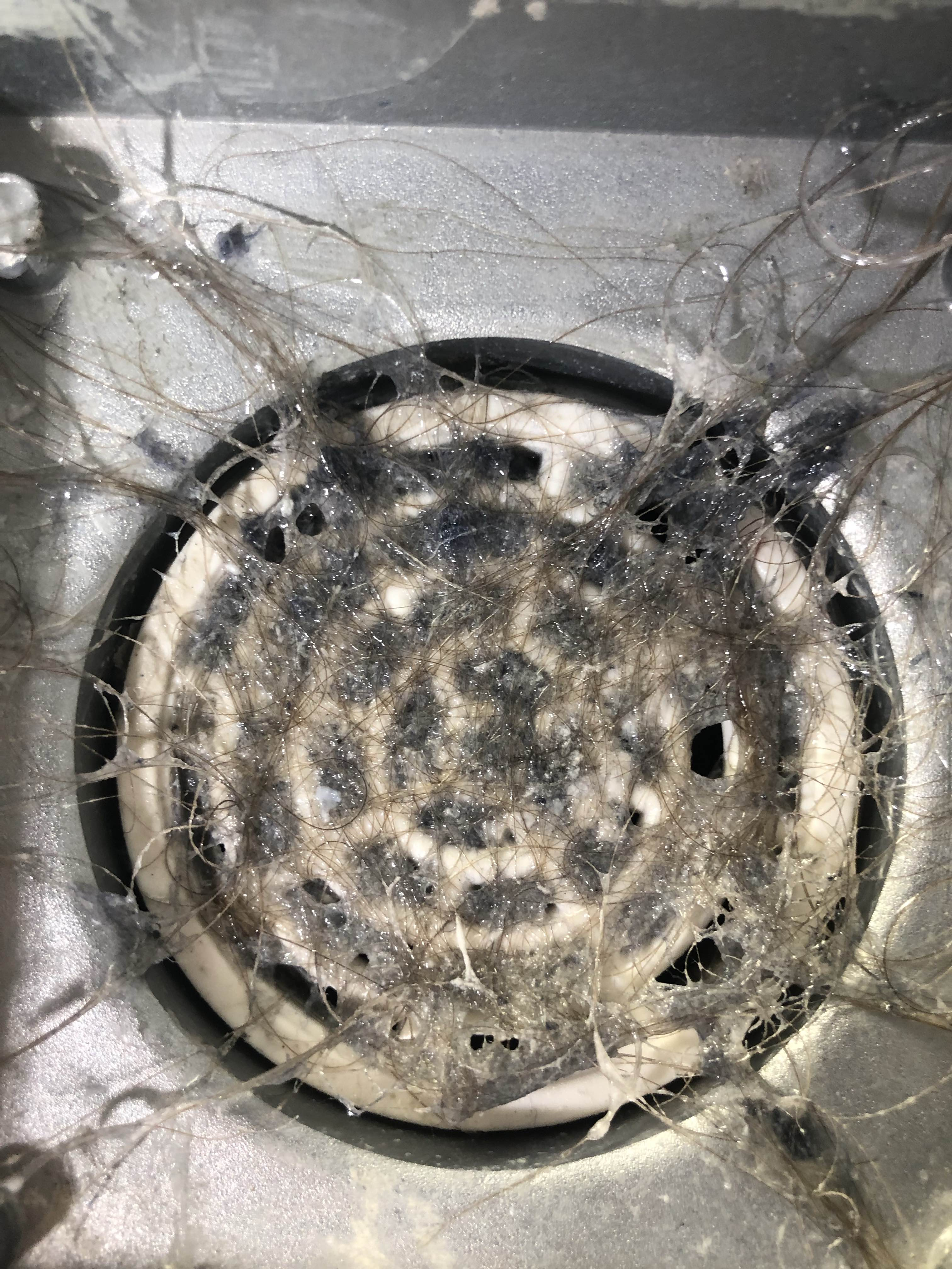 Blocked Drains and Sewer Repair Services at Glenroy Melbourne VIC By P.A.D Plumbing & Maintenance Pty Ltd via i4Tradies