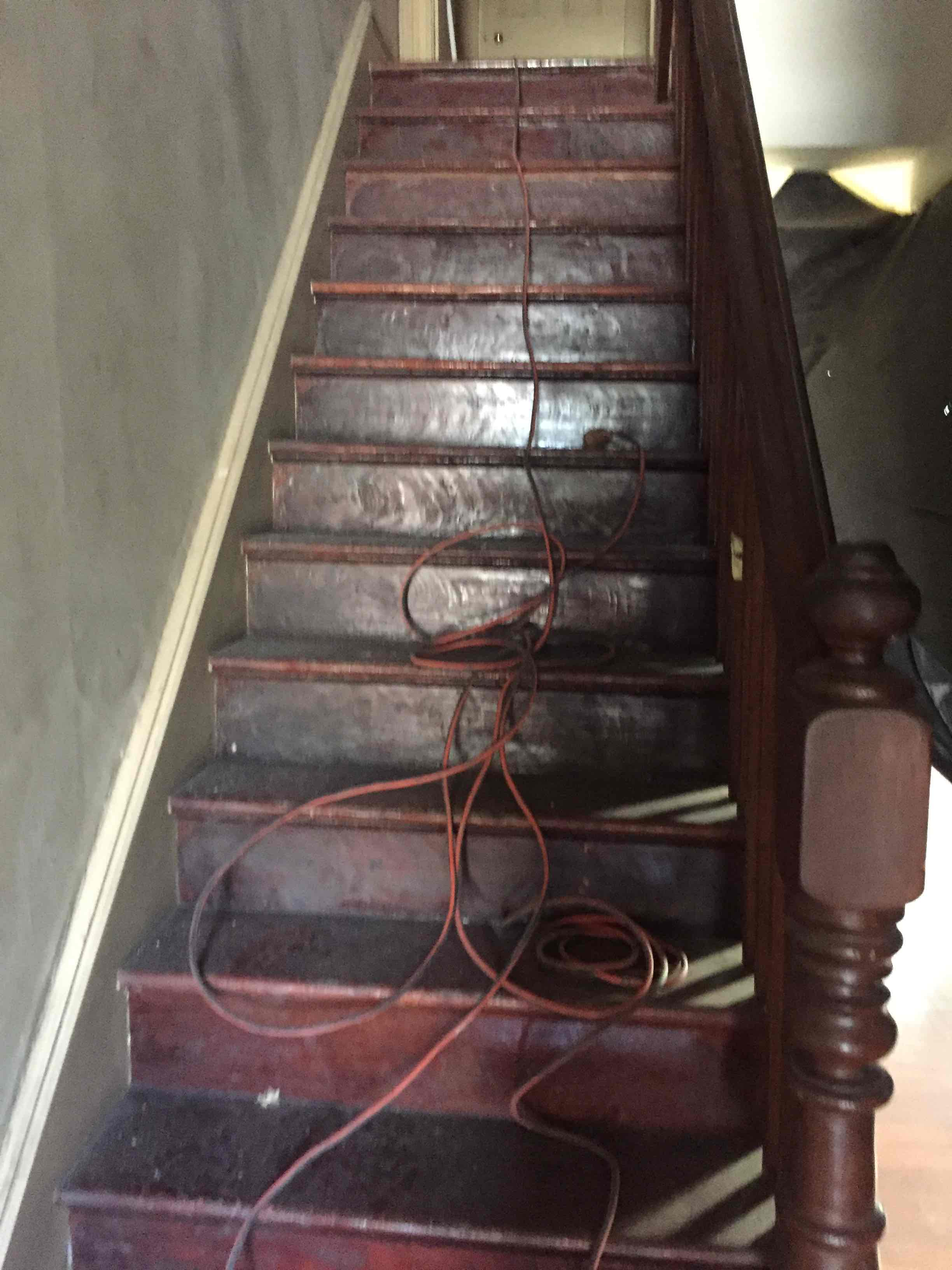 House Cleaning at Woollahra NSW By Emergency Trade Services via i4Tradies