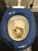 Blocked Toilet at Moonee Ponds By P.A.D Plumbing & Maintenance Pty Ltd via i4Tradies