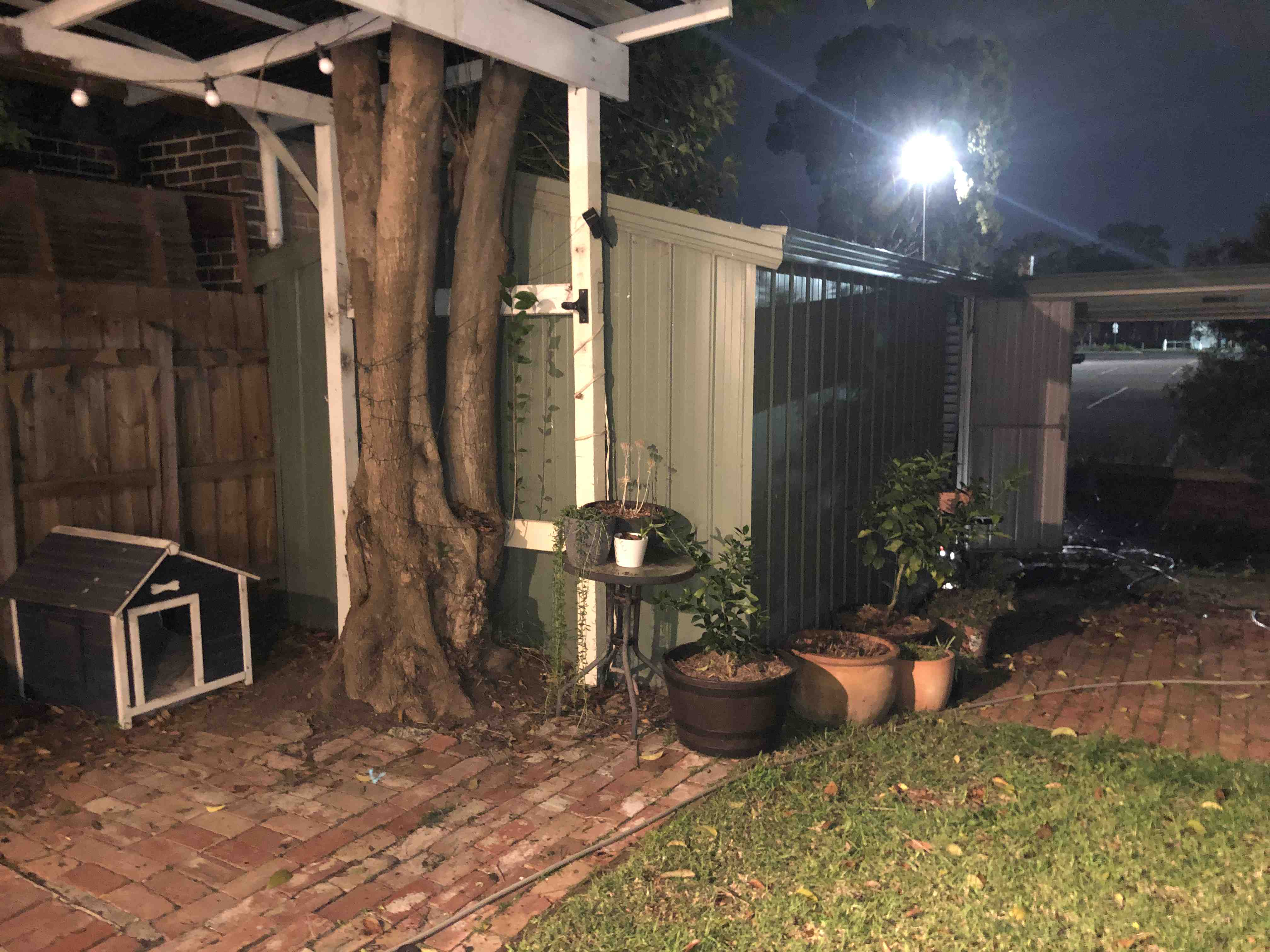 Blocked Sewer Drain Repairs - Ascot Vale By P.A.D Plumbing & Maintenance Pty Ltd via i4Tradies